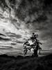 Flat Frog Tree (StefanB) Tags: usa 1235mm california em5 geotag henrycoe hiking outdoor tree treescape cloud dark