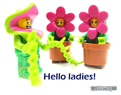 Hello ladies! (WhiteFang (Eurobricks)) Tags: lego collectable minifigures series city town space castle medieval ancient god myth minifig distribution ninja history cmfs sports hobby medical animal pet occupation costume pirates maiden batman licensed dance disco service food hospital child children knights battle farm hero paris sparta historic brick kingdom party birthday fantasy dragon fabuland circus