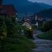 Austrian cultural landscape
