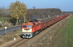 628 108 H-START (...síneken a vonat) Tags: railline130 railline feroviarul feroviar 161121 628 628108 628108start bahn szentes cukorrépa cukorrépaszezon2016 eisebahn line130 luganszk m62 m62108 mav mozdony máv rail railway szergej tehervonat train tren trenur trenuri vaggonstypeeas vasút vlacik vlak vlaky vonat zeleznice locationszentes 108 uresrepa2016 uresrepa railroad