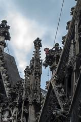 Wien-Stephansdom-Reparatur (Rüdiger Ruggero Herbst) Tags: dachdecker reparatur stephansdom wien vienna worker architektur gotik austria österreich city stadt
