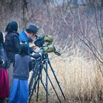 Bird watchers thumbnail
