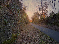 Roads Untravelled (Rollingstone1) Tags: path road bowling scotland stone wall leaves nature trees sky light texture journey travel art artwork ivy plants outdoor tree vivid colour