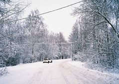 (somber_li) Tags: winter snow day white nature trees car