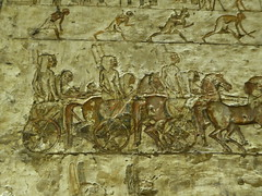 Charioteers, Tomb of Meryre, Amarna (Aidan McRae Thomson) Tags: amarna tomb egypt ancient egyptian relief carving