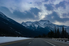 Road to Banff (1DesertRose) Tags: white grey cloudy scenic beautiful direction roadtripping breathtaking capture xt20 fujifilm driving carview cool season canada landscape travel view banff alberta mountains scene clouds winter snow cold holiday roadtrip drive road trees pines sky