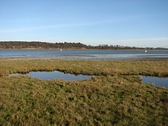 Marshes near Shotley Common (JonCombe) Tags: coastwalk193 suffolk stourandorwellwalk coast coastwalk orwell