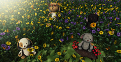 .[887] (yram_cobain) Tags: secondlife thelittlebranch yourdreams