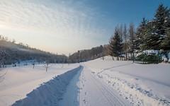 Zagorje (38) - winter morning (Vlado Ferenčić) Tags: zagorje klenovnik hrvatskozagorje vladoferencic snow vladimirferencic winter wintermorning hrvatska croatia nikond600 nikkor173528