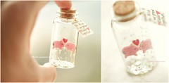 wouldn't it be nice if we grew older together,Tiny message in a bottle,Miniatures,love card,Valentine Card,Gift for her/him,Girlfriend gift, birthday card, message card and miniatures card ideas (charles fukuyama) Tags: pig piggy piglet cuteanimals bottle tiny lovecard handmadecard custom paper art homedecor deskdecor decoration unique anniversarycard greetingcards kikuike