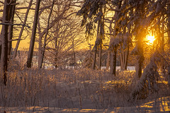 Post Snow Sunrise, Falmouth, Maine (Cindy Farr-Weinfeld) Tags: falmouth falmouthtownlanding maine sun sunrise snow winter sky coast coastal