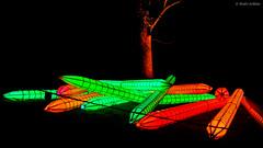 Colored Pencils (André Schlüter Photography) Tags: parkleuchten parkillumination gruga grugapark essen nrw deutschland nikon d850 nachtaufnahme nightshot coloredpencils