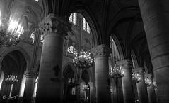 COLONNADE (P. Smt) Tags: notredame paris histoire history noietblanc noiretblanc blackandwhite bw monument monuments cathedrale cathedral lumiere light monochrome