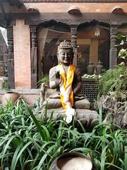 20180310_073641-2 (stacyjohnmack) Tags: kathmandu centraldevelopmentregion nepal np