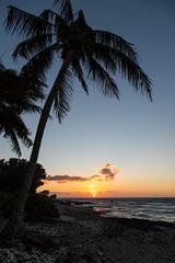 Hawaii 088.jpg (mfeingol) Tags: puako sunset hawaii holoholokaibeachpark bigisland waimea unitedstates us