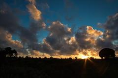 JL5A0039lum (BorrowedLightPhoto) Tags: backyard sunset clouds flare star canon1022 canon7dii blusteryday luminar for windows