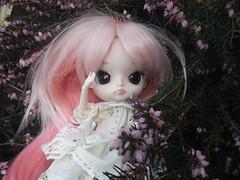 In the garden (Ǝdєи Ҡeeнℓ) Tags: dal heiwa poison girl lily pink hair brown eyes doll custo custom obitsu