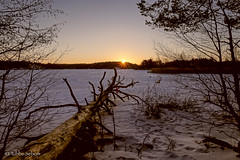 Cold Sunrise (Tube Séboom) Tags: sunrise winter lake xt2 fuji irident huddinge explore