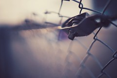 picket fences (christian mu) Tags: bokeh urban fence gronau germany christianmu depthoffield dof sonya7ii sony 35mm 3514 distagon3514 distagon zeiss