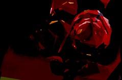 Rose (Bamboo Barnes - Artist.Com) Tags: abstract vivid digitalart texture black bamboobarnes rose red yellow