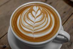 untitled-21 (SnailsPlace) Tags: snailsplace penang malaysia fujifilm fujifilmx100s x100s fujifilmxt2 xt2 mugshotcafe georgetown bagel salmonbagel yogurt appleyogurt kiwi jackfruit streetart pteranodon spork latte coffee caffeine mochalatte mocha