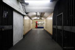 Train at the end of the tunnel - Turnpike Lane (Luke Agbaimoni (last rounds)) Tags: london londonunderground londontube train transportforlondon trains transport tube tunnel tunnelvision