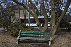 TTC Mount Pleasant Loop (rcss2800) Tags: transit ttc torontoontario torontocanada park parkette bench bus tree trees streetphotography photography photographyasiseeitt photoasart photoisart colour color colourful colorful nature