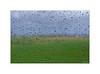 Pendant la pluie... (Laurent TIERNY) Tags: campagne pluie