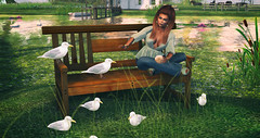Seagulls (♥Kelly Parker♥) Tags: secondlife sl virtual avatar 3d blog fashion beauty poses props secondlifeblog fashionblog blogger blogging truth hair glamaffair izzies makeup eye shadow fae lelutka bentohead maitreya meshbody mesh pixicat blouse collabor88 c88 lapointe bastchild swear lapointebastchild jeans flares jewelry maxigossamer ingenue shoes wedges sandals flf fashiowlposes new newrelease bento pose seagulls bench bread treschic firestorm photography secondlifefashion luanesworld