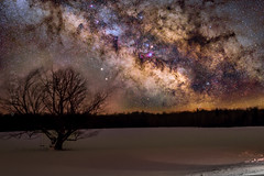 After weeks of Clouds and Snow... Finally some clear skies! (-> LorenzMao <-) Tags: milkywaygalaxy milkyway milkywaycore lonetree nikond750 nightphotography astrophotography beautyinnature winter nebulas lapatrie quebec canada nature snow nikon50mmf18g coldtemperature baretree landscape horizon constellation mtlastrophotographers galaxy galacticcenter