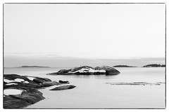 Crow`s View (Eline Lyng) Tags: monochrome monochrom bw blackandwhite animal bird crow seascape landscape nature sea water isle islet larkollen norway sunset view leica s 007 leicas mediumformat winter snow horizon