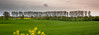 Trees on a Shoestring (Beppe Rijs) Tags: deutschland germany schleswigholstein schlei wolken wolkendecke landschaft landscape natur nature field feld gras baum tree horizont horizon grün green clouds farbig colored line rural ländlich pastell freshly color farbe acker