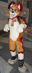 Happy Rascal (SnapperGee) Tags: cute adorable furry fursuit anthropomorphic anthro fc2018 furcon furtherconfusion cosplay orange jackal rascal ear ears paw paws happy dog canine