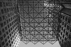 Southeast Financial Center, 200 S. Biscayne Blvd, Miami, Florida / Built: 1984 / Architect: Skidmore, Owings & Merrill Edward Charles Bassett Spillis, Candela & Partners, Inc. / Structural Engineer: Skidmore, Owings & Merril / Height: 764 ft / Floors: 55 (Jorge Marco Molina) Tags: southeastfinancialcenter 200sbiscayneblvd miami floridabuilt1984architectskidmore owingsmerrilledwardcharlesbassettspillis height764ft floors55 skidmoreowingsmerrilledwardcharlesbassettspilliscandelapartnersinc florida usa miamibeach miamigardens northmiamibeach northmiami miamishores cityscape city urban downtown density skyline skyscraper building highrise architecture centralbusinessdistrict miamidadecounty southflorida biscaynebay cosmopolitan metropolis metropolitan metro commercialproperty sunshinestate realestate tallbuilding midtownmiami commercialdistrict commercialoffice wynwoodedgewater residentialcondominium dodgeisland brickellkey southbeach portmiami sobe brickellfinancialdistrict keybiscayne artdeco museumpark brickell historicalsite miamiriver