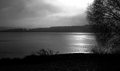 Gegenlicht und Ruhe ..... Backlight and silence (thorvonassgard) Tags: wasser see sonne gegenlicht schatten bäume stille ruhe spieglung reflexionen wolken himmel schwarzweis water lake sun backlight shade trees silence calm reflection reflections clouds sky black white