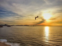 Rio de Janeiro - AMANHECER (sileneandrade10) Tags: sileneandrade riodejaneiro rio amanhecer turismo viagem landscape paisagem céu sunrise sun sol nature natureza art arte mar praia pôrdosol