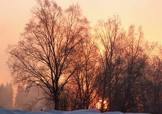 The frosty sunrise.