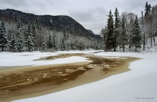 Winter Tranquility: Rivière Jacques-Cartier and the Tale of the Tea Coloured River Water