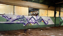 RUBER (RONEA-RUBER-GEK) Tags: ruber gek team graffiti tracé direct friche urbex painting underworld savants fou detente
