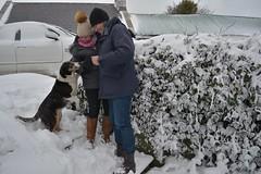 DSC_8022 (seustace2003) Tags: baile átha cliath ireland irlanda ierland irlande dublino dublin éire glencullen gleann cuilinn st patricks day zima winter sneachta sneg snijeg neve neige inverno hiver geimhreadh