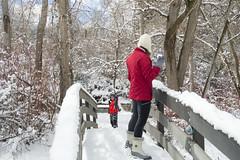 Snowballs on the Bridge (aaronrhawkins) Tags: snowball river bridge winter snow provo utah fight throw kellie joshua trek hike play storm outside cold late neighborhood aaronhawkins