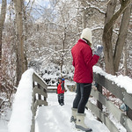 Snowballs on the Bridge thumbnail