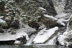 A Walk to Smoth's Brook Falls with Daisy (kimshand) Tags: snow snowing novascotia wentworth wentworthvalley canada winter winterbeauty nature photography naturephotography sonyar7iii sony