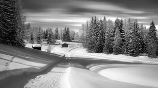 Armentara Winter Wonderland