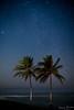 EFO_6611.jpg (edouardfourcade) Tags: stars night blue seascape beautiful palm inspiring
