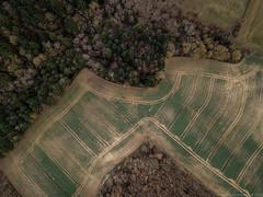 Circonvulsez (Luc Combettes) Tags: drone mavicpro ciel champs lignes nature campagne lagrâcedieu occitanie france fr