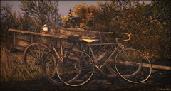 *Because when you stop and look around, this life is pretty amazing* ❤️ (Ⓐⓝⓖⓔⓛ (Angeleyes Roxley)) Tags: borneo isle bike seagull surroundings landscape secondlife sl