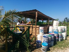 IMG_20150406_103309 (carosaul) Tags: carolinesandec containerbased sanitation compost