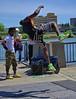 Acrobatic (Scott 97006) Tags: guy man acrobatic gymnastic midair entertaining