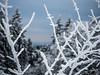 P3180045 (Kerkmann Photo) Tags: olympus kerkmannphoto winter feldberg schnee eis hessen
